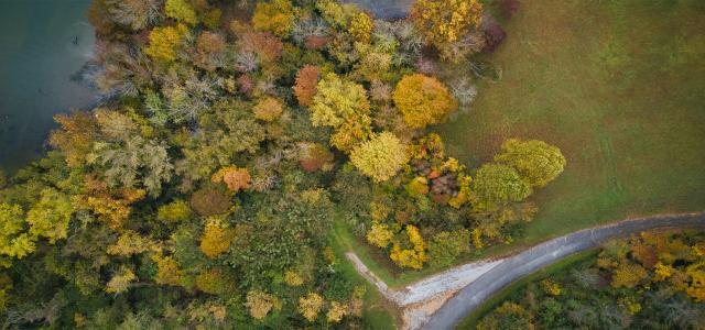 Aerial view of kentucky lake and road by Daniel Halseth